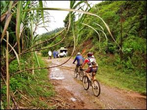 VTT à Madagascar