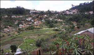 Les rizières sont encore très présentes en ville, même à Tananarive, la capitale ou à Fianarantsoa, pratiquement au coeur de la ville.