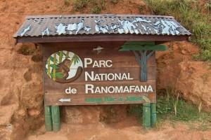 Le parc national de Ranomafana est grossièrement situé entre Fianarantsoa et Manakara