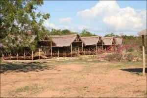 Les bungalows du centre Tsaravahina à Mangily.