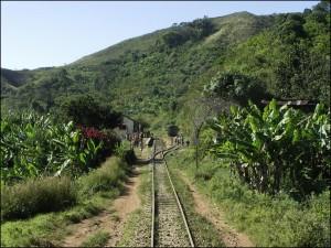 Le train arrive à la toute petite gare de Madoriano.