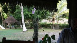 Un seul hébergement à Nosy Varika : La Petite Oasis.