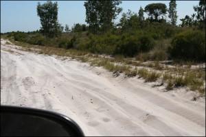 """Le sable a fait son apparition sur la piste, et il devient difficile de ne pas y rester """"planté""""."""