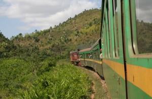 Le train FCE travese une forêt luxuriante.