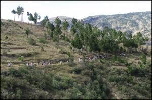 Tous les convives suivent l'orchestre en direction du tombeau.