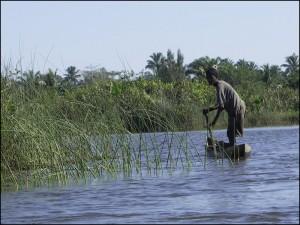 Un pêcheur inspecte ses pièges à crevette le long des berges.