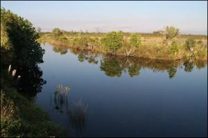 Calme et sérénité, c'est agréable de glisser doucement et en silence avec la pirogue sur les petits bras du canal.