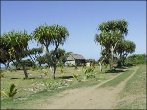 La piste au sud de Manakara entre l'Océan Indien et le canal.
