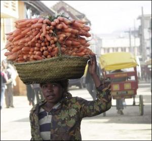 On cultive beaucoup de légumes dans la région d'Antsirabe.