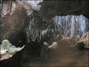 La grotte cathédrale dans le parc de l'Ankarana.