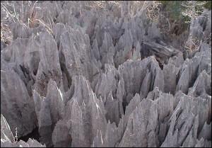 Une formation karstique fortement érodée en surface, et constitué par un lapiaz de Tsingy.