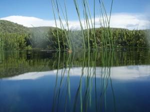 Les zones humides et point d'eau sont nombreux à Madagascar.