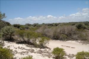 En venant de Tuléar, Tsandamba peut également être rejoint par la piste de bord de mer.