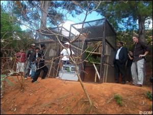 La remise officielle du propithèque couronné au Lemur's Park s'est faite en présence de plusieurs personnalités