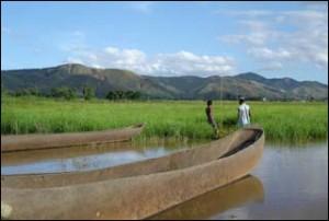 Cette zone humide est un exemple représentatif unique de type de zone humide naturelle de la région biogéographique de l'Est de Madagascar.