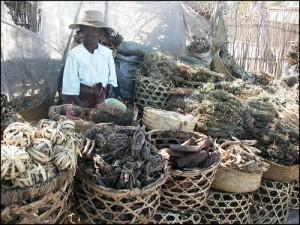 Vendeuse de plantes séchées destinées à se soigner, mais aussi à la réalisation de gri-gris... très fréquents sur l'Ocean Indien