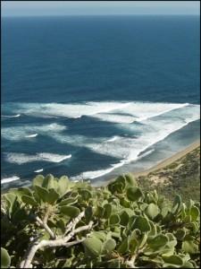 Superbe paysage du grand sud vers le Cap Ste Marie.
