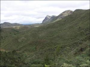 Forêts sempervirentes. Paysage du Pays Zafimaniry.