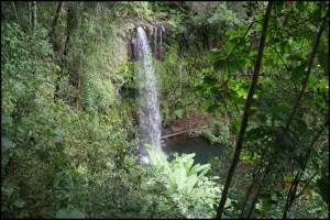 Cascade au parc de la Montagne d'Ambre.  Ankarana.