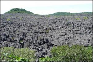 Les Tsingy du parc de l'Ankarana.  Ankarana.