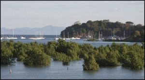 Mangrove et mouillage à Nosy Be.