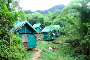 Antalaha Marajajy Masoala. Camp Mantela
