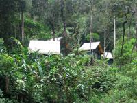 Antalaha Marojejy Masoala. Camp Marojejia.