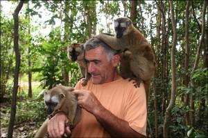 Canal des Pangalanes. A la réserve du Vakona, les lémuriens sont en liberté, mais très familiers.