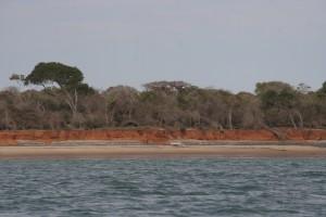 Ifaty Morondava. baobabs elo sur Mer.