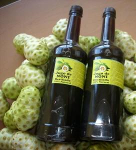 """Jus de """"noni"""", le fruit du morinda citrifolia, en bouteille"""