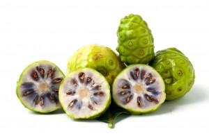 "Coupe du ""noni"", fruit du morinda citrifolia."